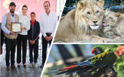 Bosque y Zoológico de la Ciudad, trabajando con el corazón en tiempos de pandemia – Dulce Díaz